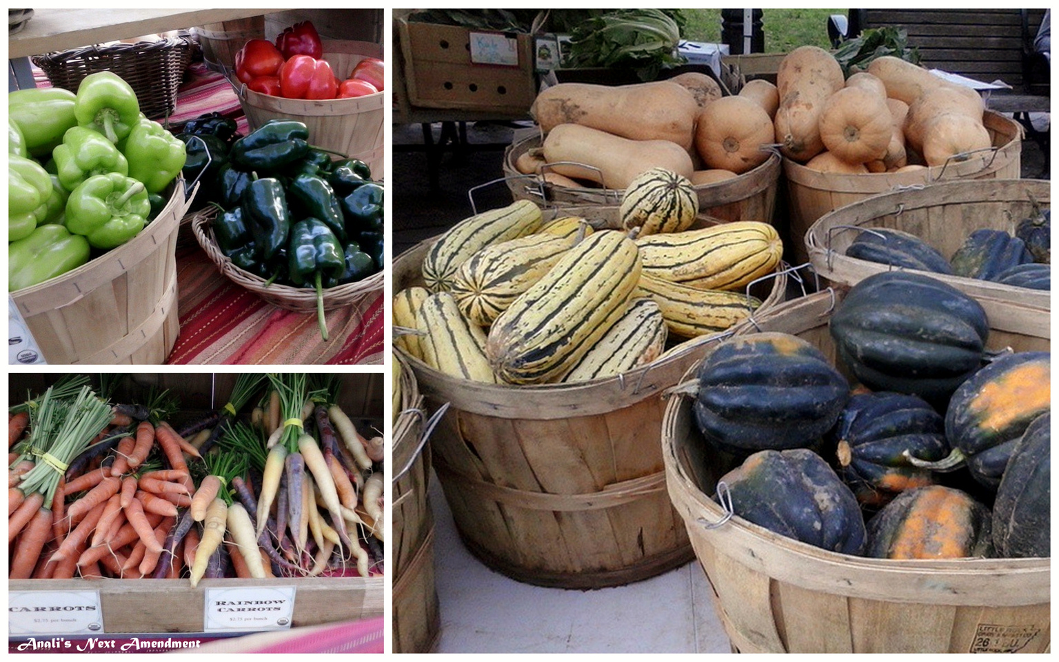 Copley Square Farmers market squash carrots peppers