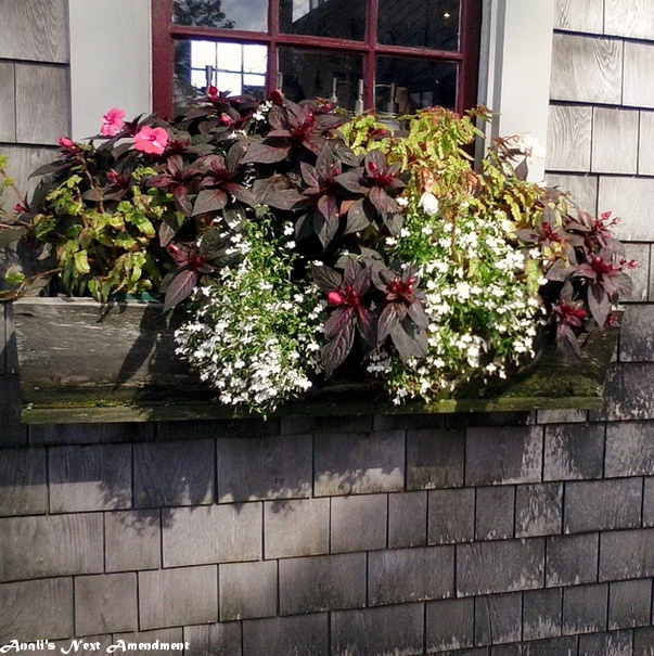 Nantucket flowerbox
