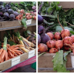 Farmers Market: Copley Square in Boston