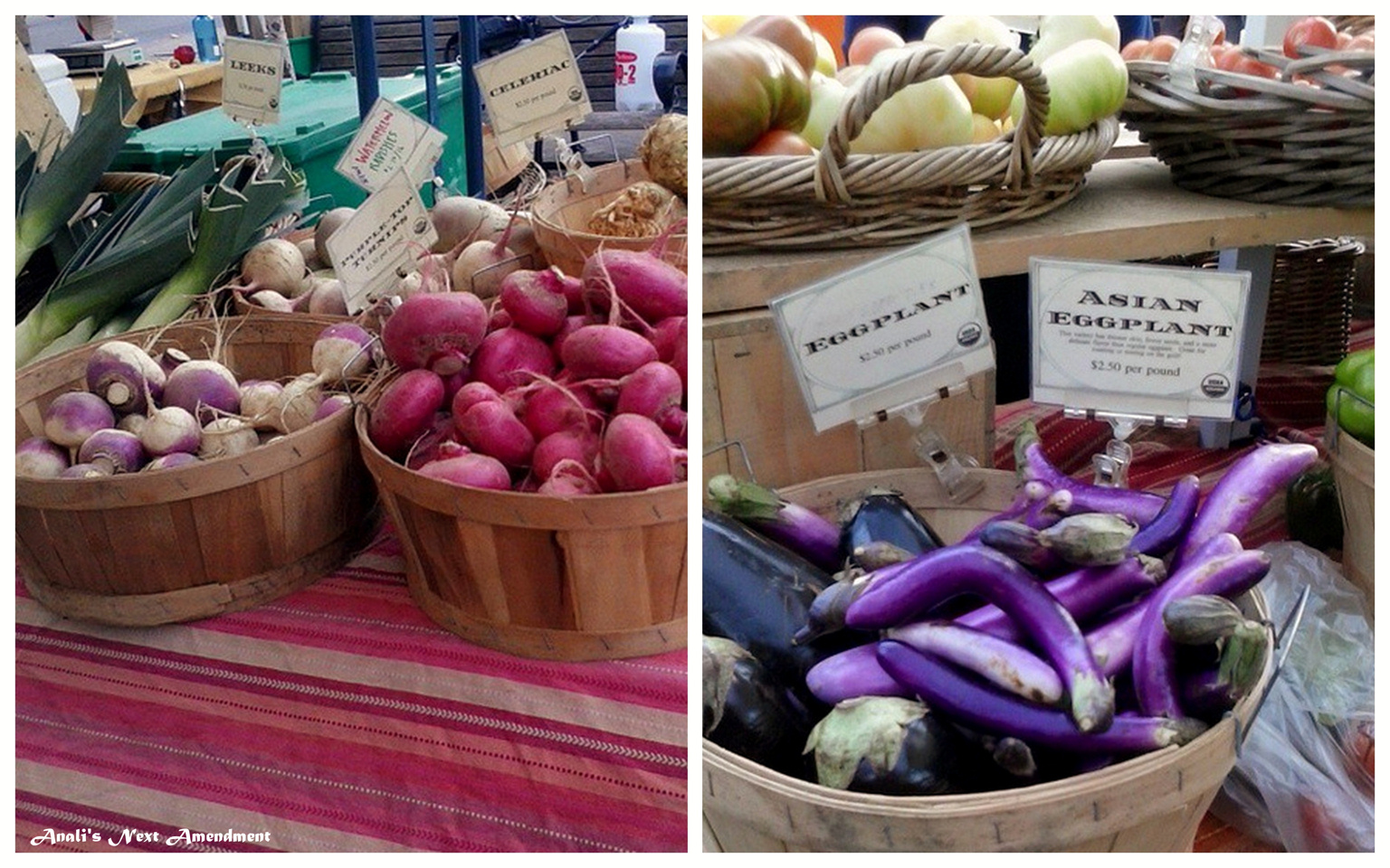 Copley Square farmers market vegetables