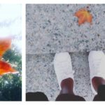 A Collection Of Moments: October