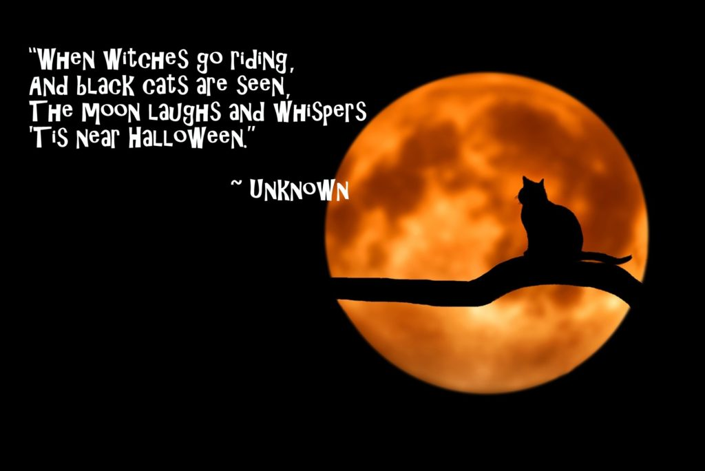 Halloween Quote