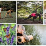 Free Yoga Boston: Summer 2021