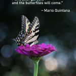 Quote of the Week: Mario Quintana