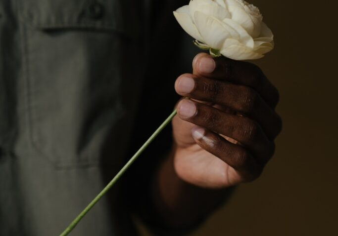 hand of black man holding white rose