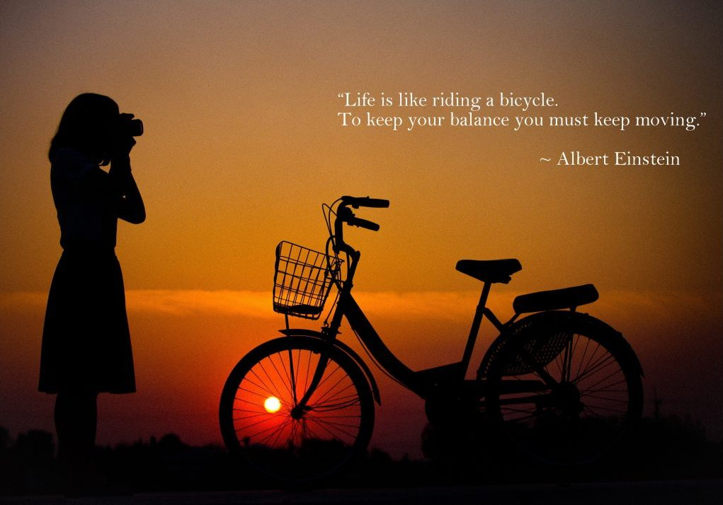 life like a bicycle quote